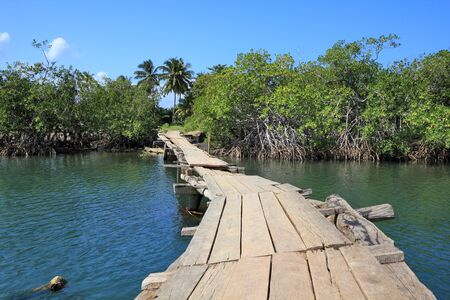 caribbean climate: Baracoa, Cuba - Rio Miel bridge, part of Alejandro de Humboldt National Park