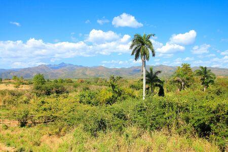mill valley: Sugar Mill Valley in Trinidad