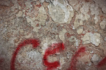 urban decline: Texture of old concrete urban wall. City decay background. Stock Photo