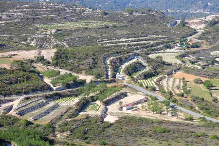 wine country: Cyprus - countryside in Limassol District. Wine country with vineyards.
