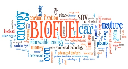 biofuel: Biofuel - transportation issues and concepts tag cloud illustration. Word cloud collage concept. Stock Photo