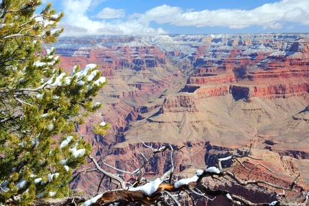 point of view: Grand Canyon in Arizona, United States. Mather Point view with snow.