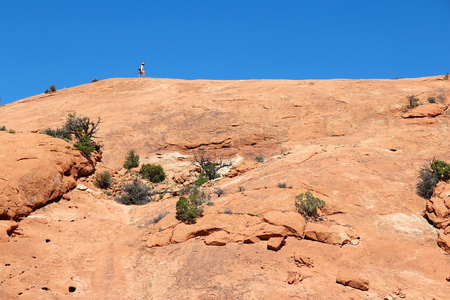 lonesome: United States nature in Utah. Lonesome tourist in Needles district of Canyonlands National Park.