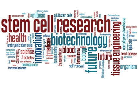 stem cell: Stem cell research social issues and concepts word cloud illustration. Word collage concept. Stock Photo