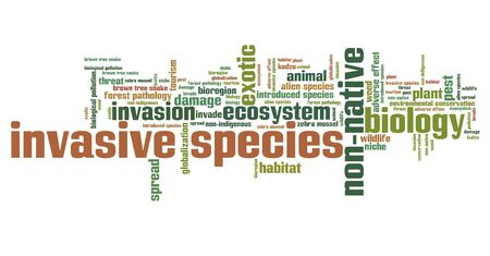adverse: Invasive species - environment issues and concepts word cloud illustration. Word collage concept. Stock Photo