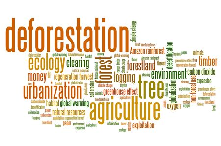 deforestation: Deforestation issues and concepts word cloud illustration. Word collage concept. Stock Photo