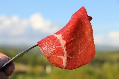 Italian cuisine - picnic in Tuscany. Beef carpaccio. Stock Photo