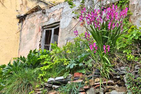 ''cinque terre'': Abandoned house in Riomaggiore, Cinque Terre, Italy.