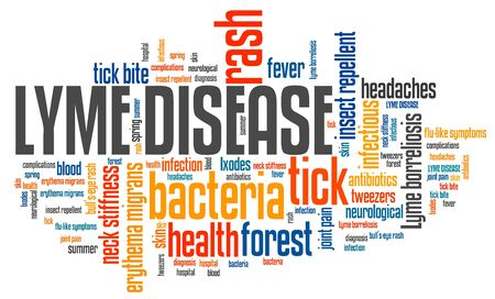 borreliosis: Lyme disease - tick borne infectious sickness. Health problems word cloud illustration. Stock Photo