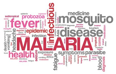 malaria: Malaria - traveller disease in Africa, Asia and Latin America. Travel health word cloud. Stock Photo