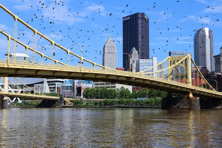 allegheny: Pittsburgh city skyline, United States. Ominous birds.