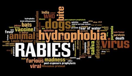 wścieklizna: Rabies - viral disease of humans and animals. Health care word cloud.