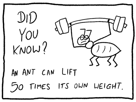 trivia: Insect facts about ants strength - fun trivia cartoon doodle concept. Newspaper funny comic fact. Illustration