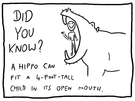 Animal facts about hippo mouth - fun trivia cartoon doodle concept. Newspaper funny comic fact.