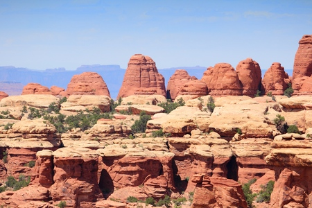 canyonlands national park: United States nature in Utah. Needles district of Canyonlands National Park. Stock Photo