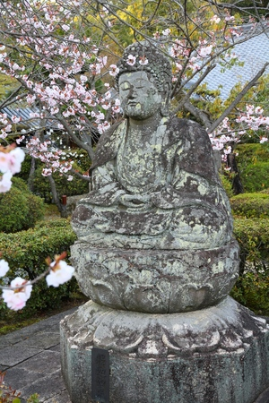 ninnaji: Kyoto, Japan - Buddha statue - old stone sculpture and cherry blossom flowers at Ninna-ji Temple.
