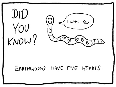 Animal trivia - leuk cartoon doodle concept. Krant grappig komisch feit.