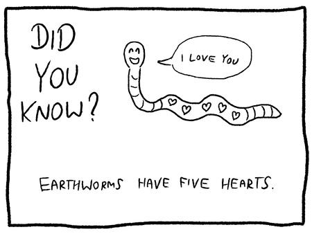 Animal trivia - fun cartoon doodle concept. Newspaper funny comic fact. Illustration