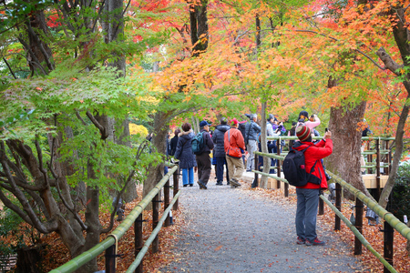 koyo: KYOTO, JAPAN - NOVEMBER 25, 2016: People visit Kitano Tenmangu shrine gardens in Kyoto, Japan. 19.7 million foreign tourists visited Japan in 2015.