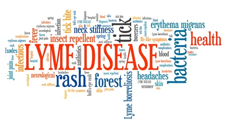 Lyme disease - tick borne infectious sickness. Health problems word cloud.