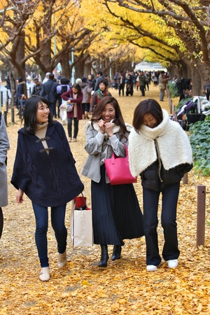koyo: TOKYO, JAPAN - NOVEMBER 30, 2016: People visit autumn Ginkgo Avenue in Tokyo, Japan. Icho Namiki Avenue is famous for its celebration of autumn leaves.