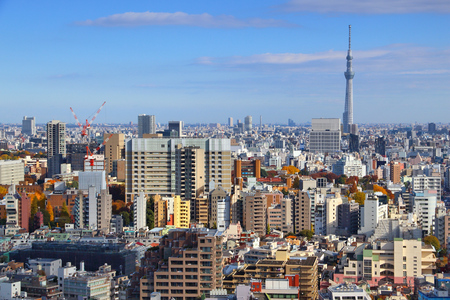 Tokyo city skyline with Bunkyo district. Big city aerial view.