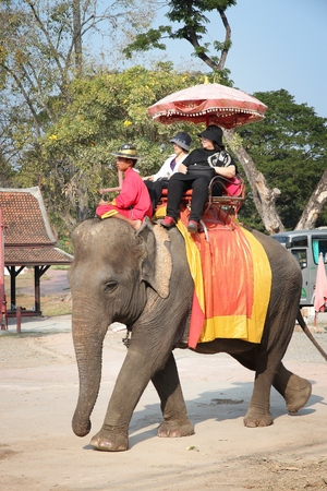 AYUTTHAYA, THAILAND - DECEMBER 23, 2013: Tourists ride elephants in Ayutthaya, Thailand. Thailand currently has some 2,700 domesticated elephants.