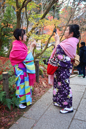 KYOTO, JAPAN - NOVEMBER 24, 2016: Women in kimono take photos with autumn leaves of maple (momiji) in Kyoto, Japan. Autumn leaves admiration (koyo) is an important tradition of Japanese culture.