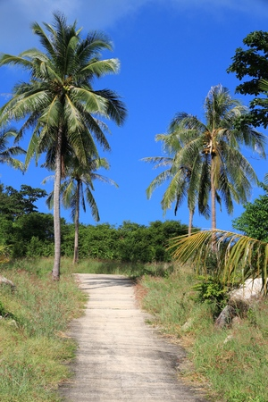 Thailand, Southeast Asia - road in Ko Tao island in Surat Thani province.