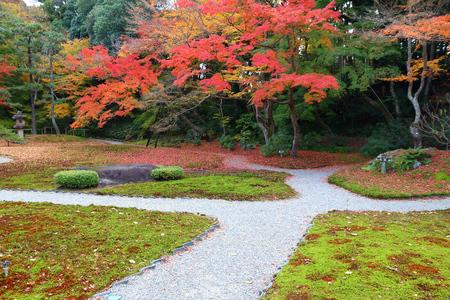 Autumn foliage moss garden in Japan - red momiji leaves (maple tree) in a Japanese tea garden of Yoshikien, Nara, Japan.