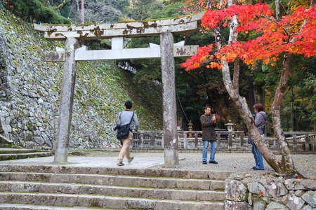 MINOO, JAPAN - NOVEMBER 22, 2016: People visit Meiji no Mori Mino Quasi-National Park near Osaka, Japan. The park is known for its spectacular autumn views. 新聞圖片