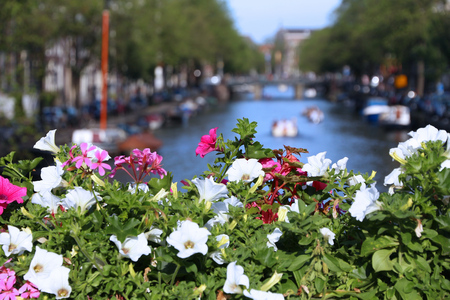 Flowers on Prinsengracht canal in Amsterdam, Netherlands. Stock Photo