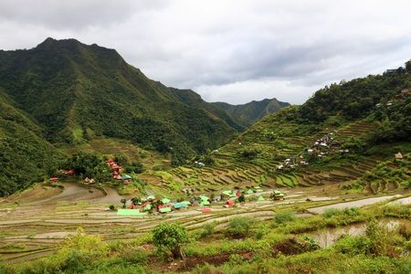 Philippines rice terraces - rice cultivation in Batad village (Banaue area).