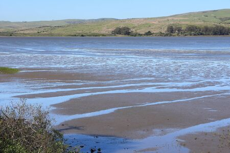 California - Tomales Bay Ecological Reserve with salt marsh and tidal flats.
