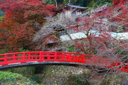 Red Japanese bridge in Minoo Park near Osaka, Japan.