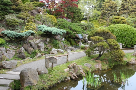 San Francisco - Japanese Tea Garden in Golden Gate Park.