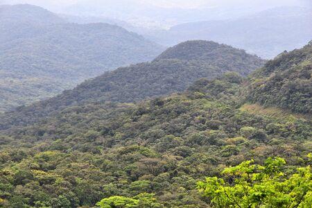 Jungle covered mountains in Brazil - Serra Verde landscape. Stockfoto