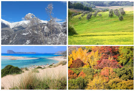Four seasons photo collection - winter, spring, summer and autumn concept.