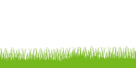 Green grass vector. Grass border illustration. Stockfoto - 119091332