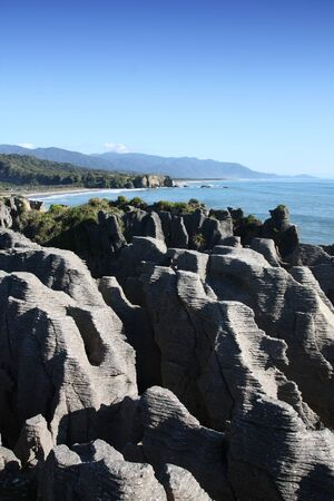 New Zealand nature. Pancake Rocks. Paparoa National Park. 免版税图像