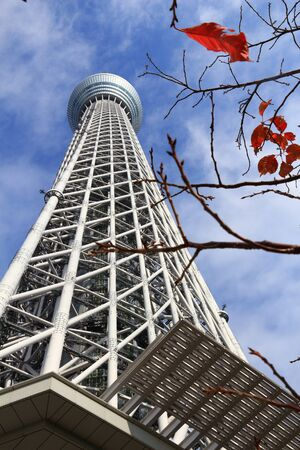 TOKYO, JAPAN - NOVEMBER 30, 2016: Tokyo Skytree Tower in Japan. The 634m tall TV tower is the 2nd tallest structure in the world.