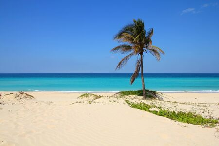 Cuba landscape. Caribbean beach Playa Megano in Playas del Este part of Havana Province.