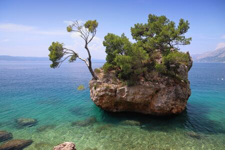 Brela, Croatia. Natural landmark miniature rock island with sturdy pine trees. Punta Rata. Stock Photo