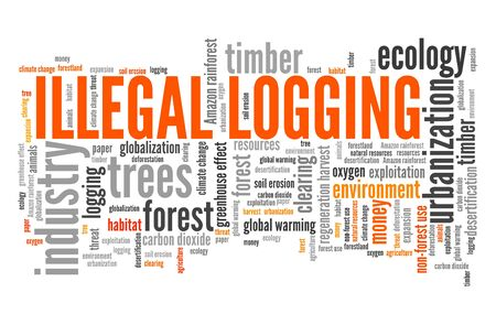 Illegal logging word cloud. Environmental crime concept. Stock Photo