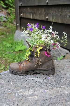 Unique garden decoration - flower pot made of a boot.