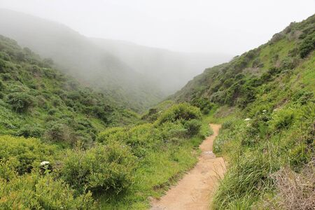 Hiking in California in foggy weather. McClures Beach trail in Point Reyes peninsula.