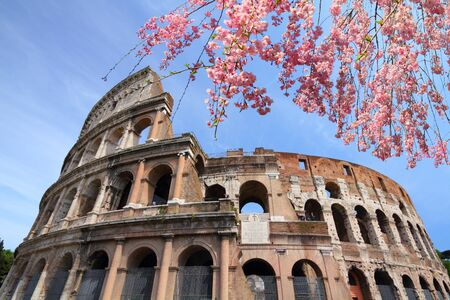 Rome city, Italy. Ancient Roman Colosseum. Spring time cherry blossoms.