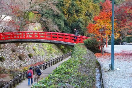 MINOH, JAPAN - NOVEMBER 22, 2016: People visit Meiji no Mori Mino Quasi-National Park near Osaka, Japan. The park is known for its spectacular autumn views. 新聞圖片