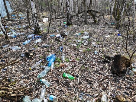 Illegal trash in forest of Silesia region in Poland.