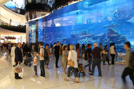 DUBAI, UAE - NOVEMBER 22, 2017: Shoppers visit the Aquarium wall at Dubai Mall. It is the largest mall in the world by total area with 502,000 square metres retail area.